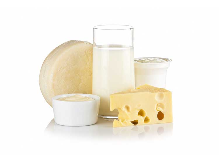 dairy and cheese